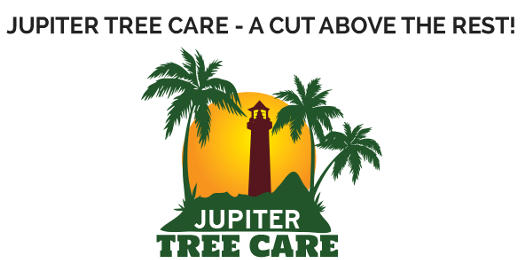 Jupiter Tree Care, Our Emergency Services